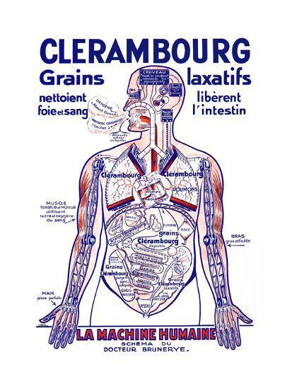 Clerambourg Grains Laxatifs--Art Print