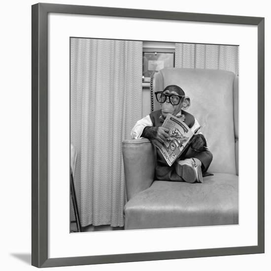 Clever Monkey-Vecchio-Framed Photographic Print
