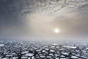 Mist on the Pack Ice, in the High Arctic Ocean, North of Spitsbergen, Svalbard Islands, Norway by ClickAlps
