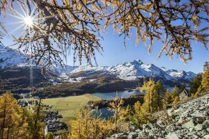 Red Autumn Larches Hide the Sun by Lake Sils. Engadine. Switzerland by ClickAlps