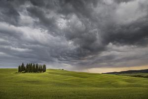 San Quirico D'Orcia, Tuscany, Italy. Cypresses and Stormy Sky. by ClickAlps