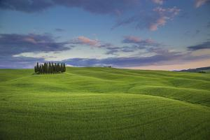 San Quirico D'Orcia, Tuscany, Italy. Cypresses at Sunset. by ClickAlps