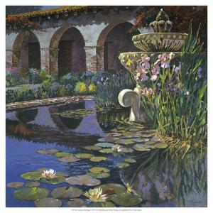 Fountain at San Miguel I by Clif Hadfield