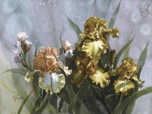 Hadfield Irises I by Clif Hadfield