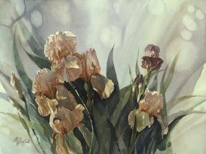 Hadfield Irises II by Clif Hadfield