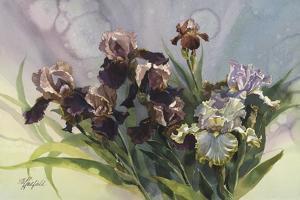 Hadfield Irises IV by Clif Hadfield