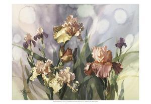 Hadfield Irises V by Clif Hadfield