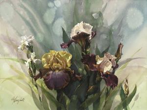 Hadfield Irises VI by Clif Hadfield