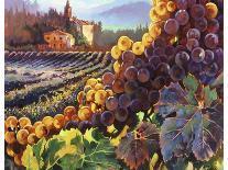 Tuscany Harvest-Clif Hadfield-Art Print