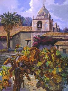 Vineyard at San Miguel by Clif Hadfield