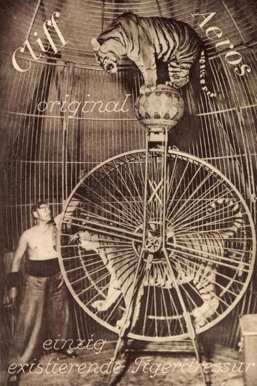 Cliff Aeros, Tigerdressur, Zirkusk?nstler, Laufrad, Raubkatzen--Giclee Print