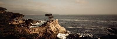 Cliff along the Sea, Seven Mile Beach, California, USA--Photographic Print
