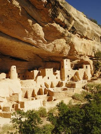 https://imgc.artprintimages.com/img/print/cliff-palace-in-mesa-verde-national-park_u-l-pzl6i00.jpg?p=0