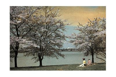 Two Women Sit by a Waterfront Framed by Cherry Blossoms by Clifton R^ Adams
