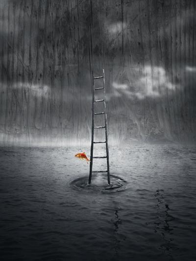 Climb Up-ValentinaPhotos-Art Print