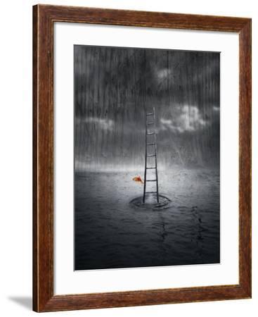 Climb Up-ValentinaPhotos-Framed Art Print