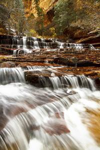 Archangel Falls Lies Near the Subway in Zion National Park, Utah by Clint Losee
