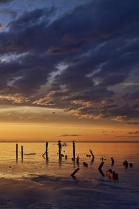 Remnants of an Old Pier Poke Out at the Great Salt Lake in Utah Near Saltair by Clint Losee