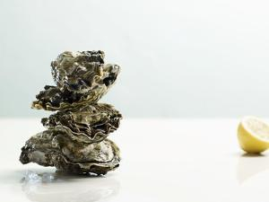 Tower of Oysters by Clinton Hussey