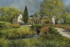 First Blossom, Cotswolds by Clive Madgwick