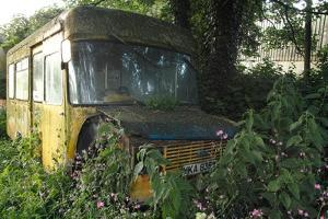 Old Bus in Woodland by Clive Nolan