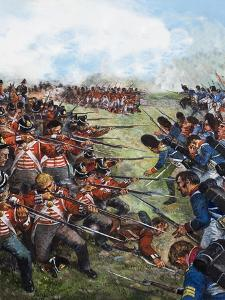 The Battle of Waterloo, 1815 by Clive Uptton