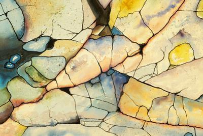 Shoreline Rocks by clivewa