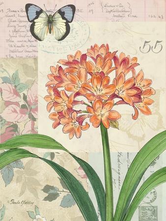 https://imgc.artprintimages.com/img/print/clivia-floral-collage_u-l-q19vo640.jpg?p=0