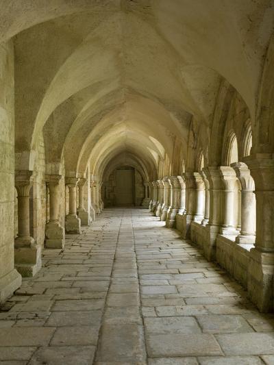 Cloisters, Fontenay Abbey, UNESCO World Heritage Site, Burgundy, France, Europe-Rolf Richardson-Photographic Print