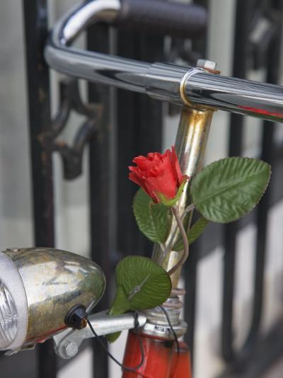 Close Up of a Bicycle with a Rose for Decoration, Amsterdam, Netherlands, Europe-Amanda Hall-Photographic Print