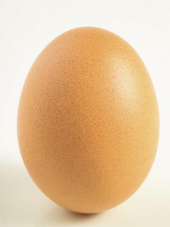 Close-Up of a Brown Egg--Photographic Print