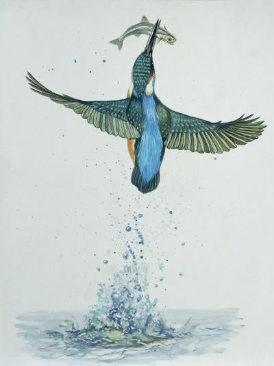 Close-Up of a Common Kingfisher Gripping a Fish (Alcedo Atthis)--Photographic Print