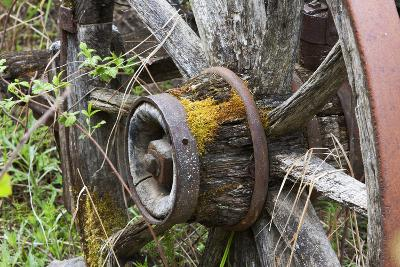 Close Up of a Decaying Old Wagon Wheel-Marc Moritsch-Photographic Print