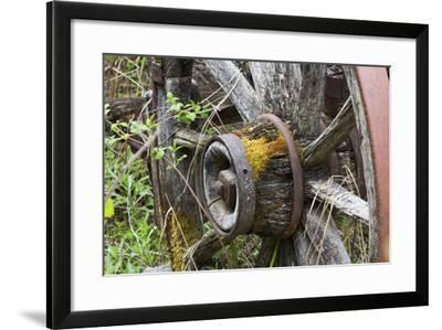Close Up of a Decaying Old Wagon Wheel-Marc Moritsch-Framed Photographic Print