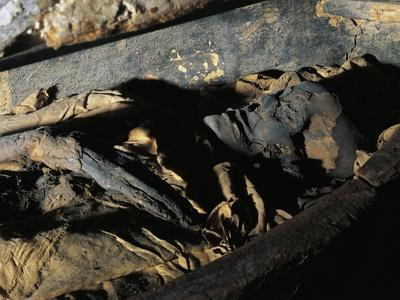 Close-Up of a Decomposed Mummy, Museo Archeologico Nazionale, Florence, Tuscany, Italy--Giclee Print