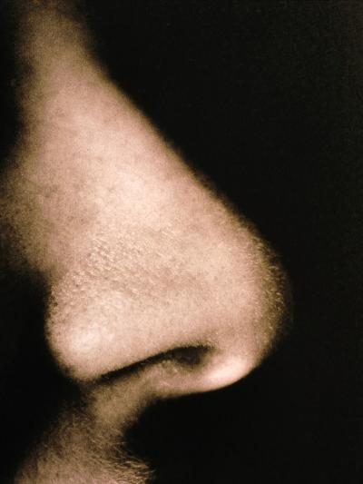 Close-up of a Human Nose In Side View-Cristina-Photographic Print
