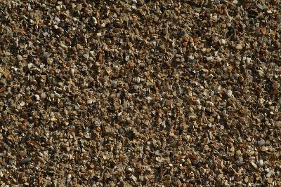 Close Up of a Pebble-Dashed Wall-Natalie Tepper-Photo