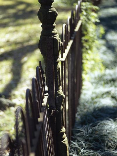 Close-up of a Pointed Metal Gate--Photographic Print