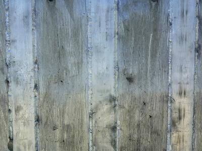 Close-up of a Rough Gray Concrete Wall--Photographic Print