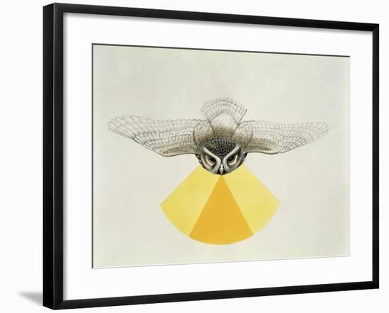 Close-Up of an Owl with its Field of Vision--Framed Giclee Print