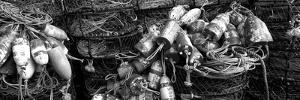 Close-Up of Crab Pots, Humboldt County, California, USA