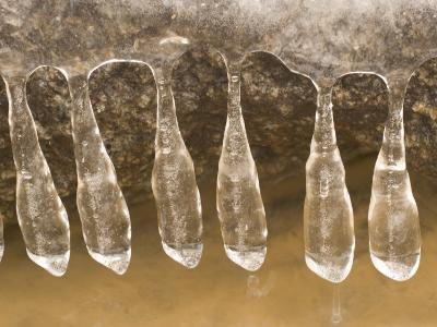 Close-up of Icicles Hanging from an Ice Layer on Top of a Rock-Phil Schermeister-Photographic Print