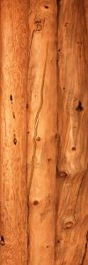 Close-up of log house, Oregon, USA