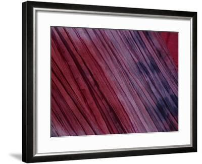 Close-Up of Multicolored Fabric with Purple and Pink in New Orleans, Lousiana--Framed Photographic Print
