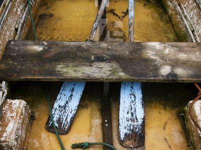 Close-up of Oars in a Flooded Rowboat-Todd Gipstein-Photographic Print