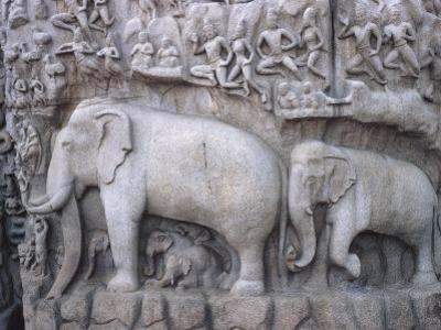 Close-Up of Ornate Sculpture of Elephants, Mahabalipuram, India