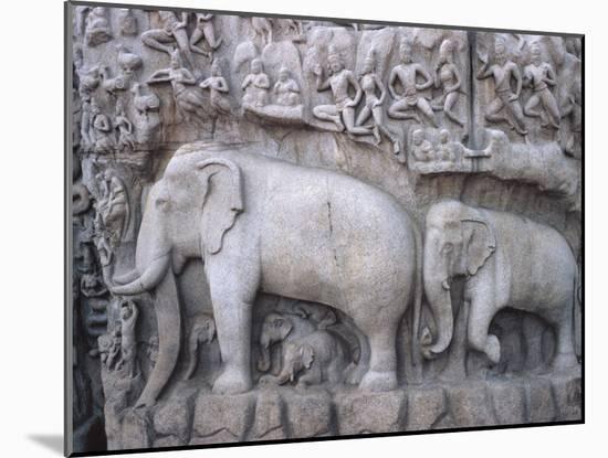 Close-Up of Ornate Sculpture of Elephants, Mahabalipuram, India--Mounted Photographic Print