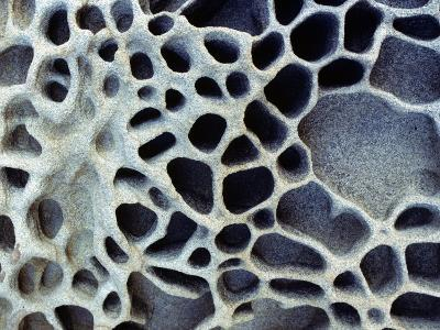 Close Up of Patterns in the Coastal Sand of Puget Sound, Washington, Usa-Jeff Foott-Photographic Print