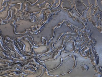 https://imgc.artprintimages.com/img/print/close-up-of-rough-texture-engraved-on-a-shiny-metallic-surface_u-l-q10x4ci0.jpg?p=0