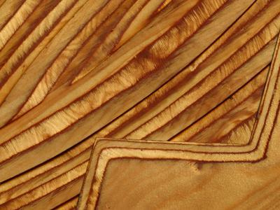 https://imgc.artprintimages.com/img/print/close-up-of-smooth-detail-lines-carved-into-a-piece-of-wood_u-l-q10x0w10.jpg?p=0